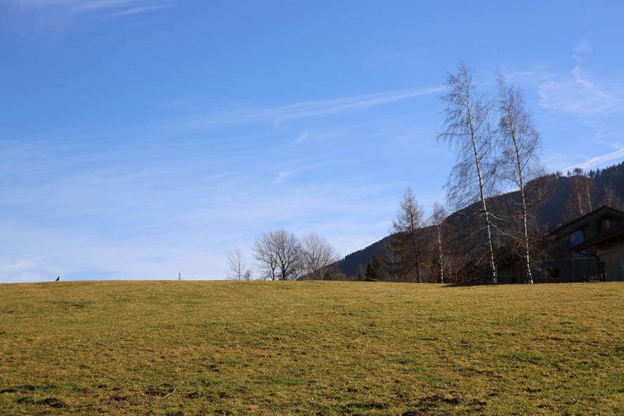 Blick vom Garten aus:Blick auf eine Wiese. Die Berge sind in der Ferne.