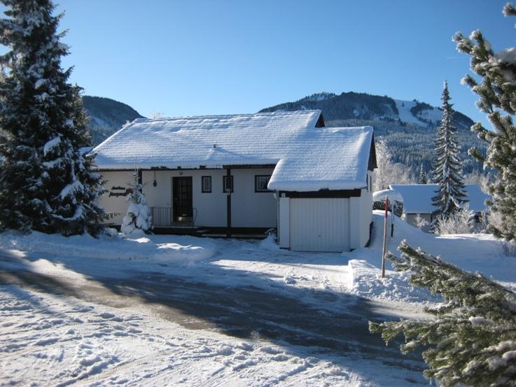 Im Winter:Im Hintergrund ist die Buron Skipiste an der Reutterwanne erkennbar