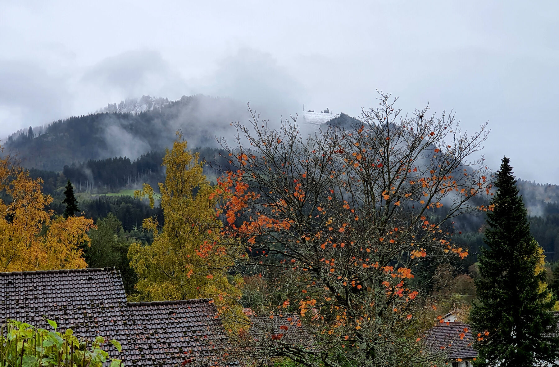 Blick von Terrasse:Erster Schnee im Oktober 2020