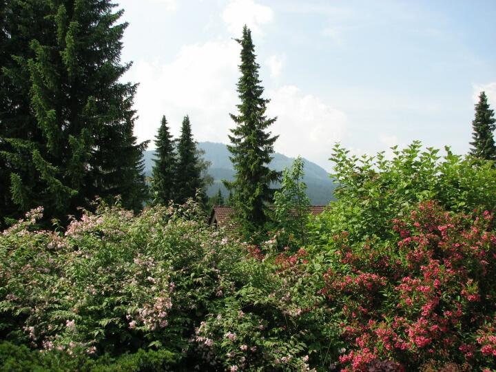 Aussicht:Blick von der Terrasse auf den Berg Buron