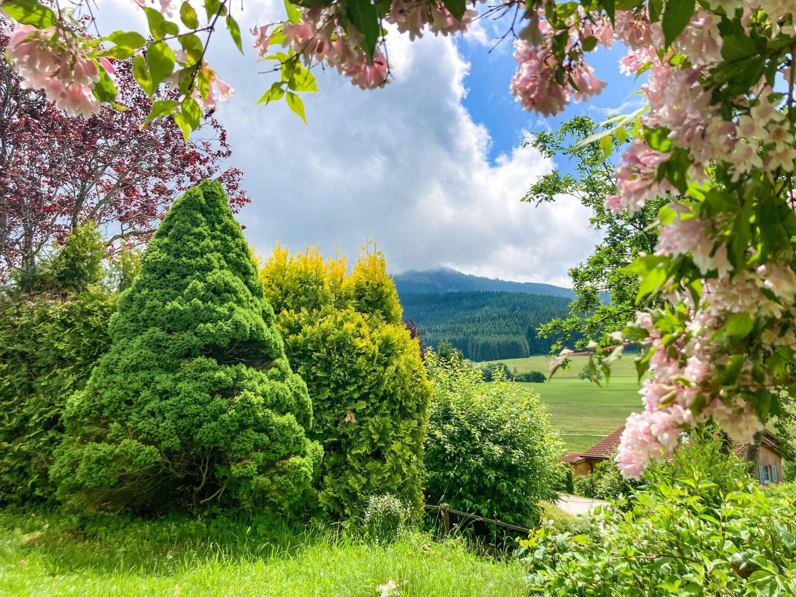 Garten :