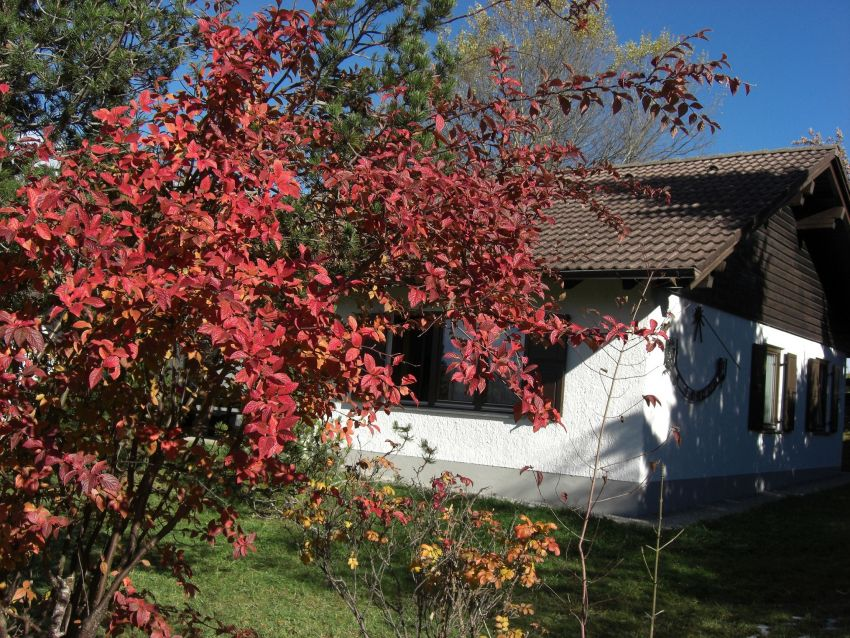 im Herbst: