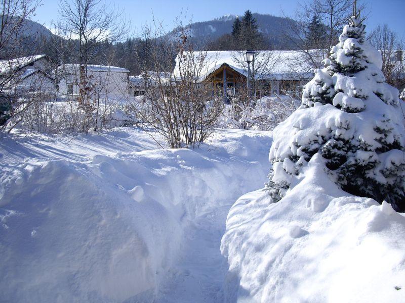 Garten im Winter:Blick von der Terasse