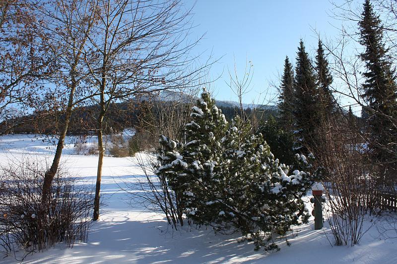 Winterblick:Herrlicher unverbauter Blick auf die Alpspitze von Nesselwang.