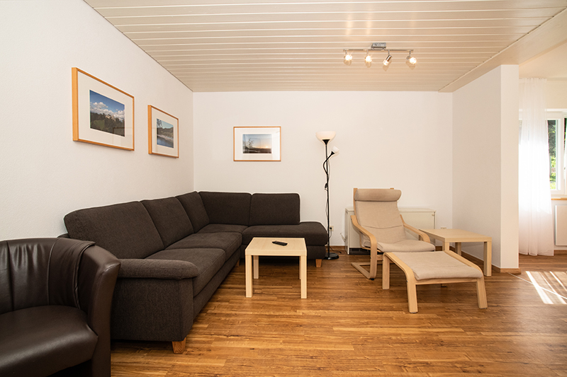 Wohnbereich:Wohnbereich mit gemütlichem Sofa und Sessel