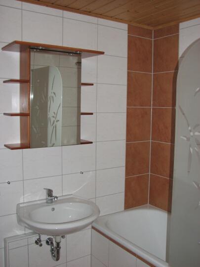 Badezimmer:Das neu renovierte Badezimmer mit Wanne und Duschabtrennung aus Glas